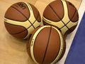 fiba_basketballs_20042005